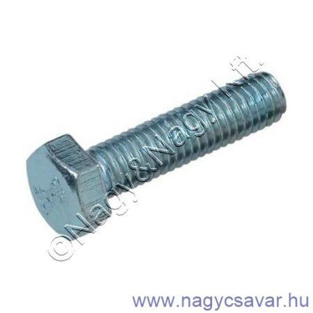 M10x80 hlf.tm.csavar horg. 5.6
