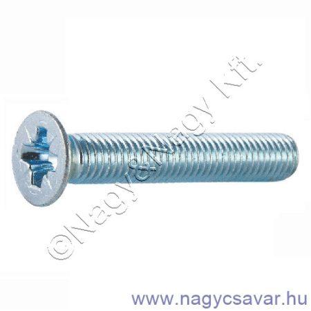 M3x10 sf.xh.csavar horg. 4.8